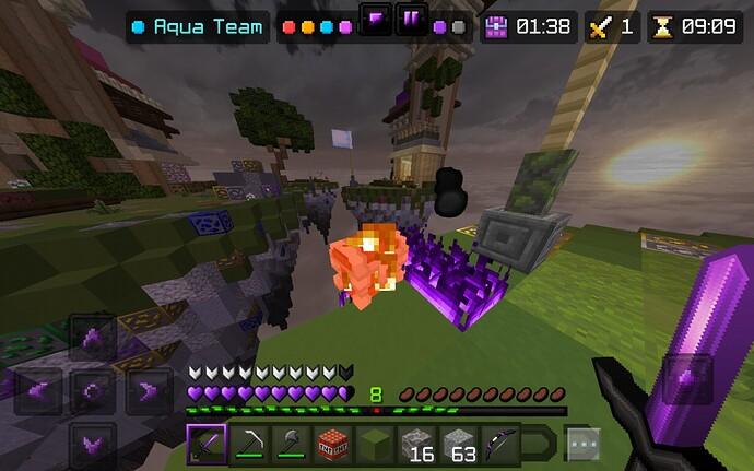 Screenshot_20210329-164218_Minecraft